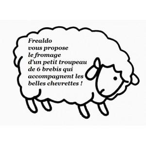 Brebis frais / 2 pc