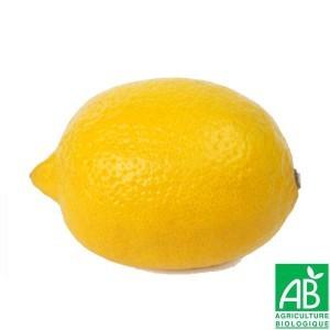 Citrons 3/4 pc